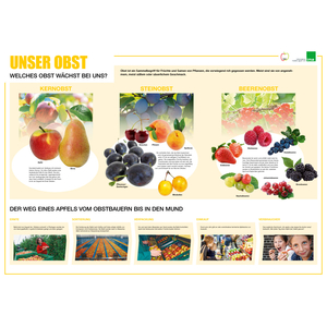 Poster Obst